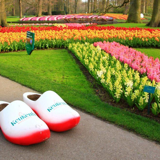 holland-keukenhof-tulips-2014